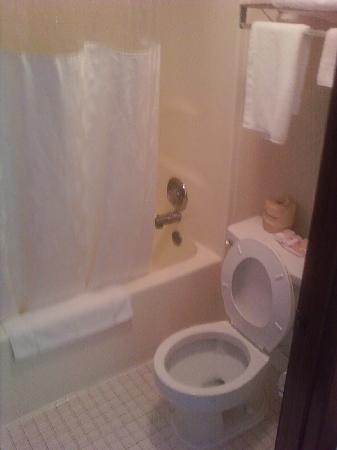 Ramada Limited Augusta/Near Fort Gordon : Bathroom w/o sink