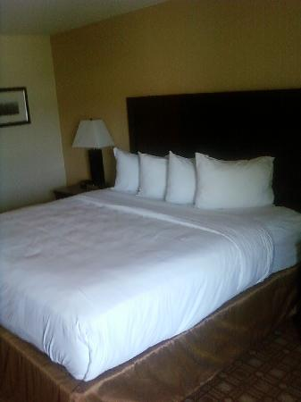 Baymont Inn & Suites Augusta West: Big and TALL bed