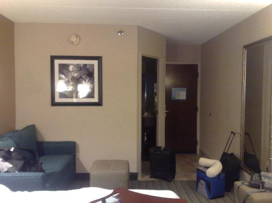 Hampton Inn Chicago/Westchester (Oak Brook) : Couch/ hallway/entrance area