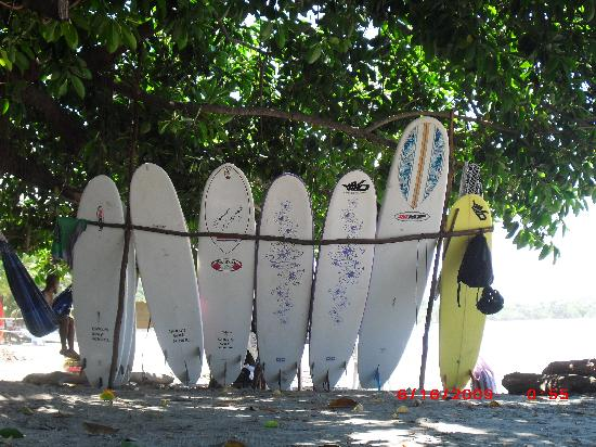 Fenix Hotel - On The Beach: Surboards for rent