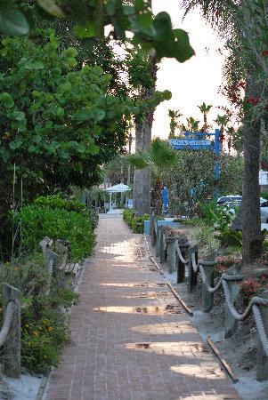 Tropical Beach Resorts照片