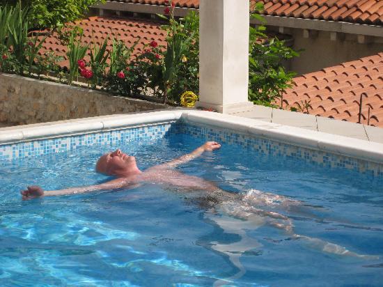 Villa Klaic: Milo's Pool