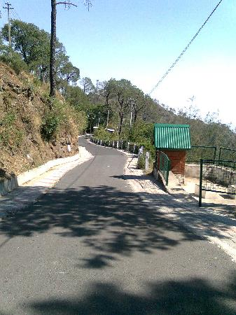 Winnies Holiday Resort: way to sunset point in kasauli