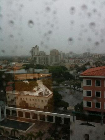 Hyatt Regency Coral Gables: View from the 12th floor of rainy Miami.  Hey, at least it wasn't 100 degrees.