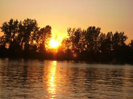 Le Bateau-Mouche au Vieux-Port de Montréal: Sunset from Le Bateau Mouche so romantic