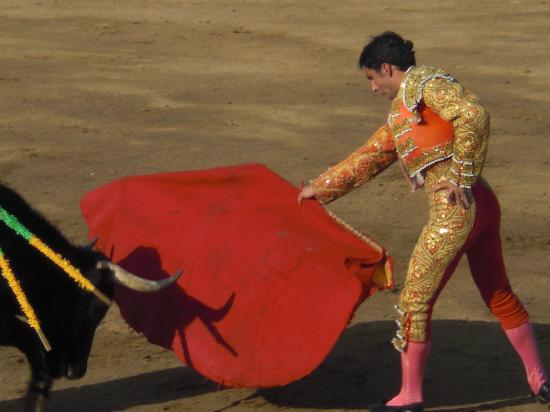 La Paloma Plaza de Toros: The third pass.  Warning: Not everyone can wear pink, orange, and gold with a red cape and look