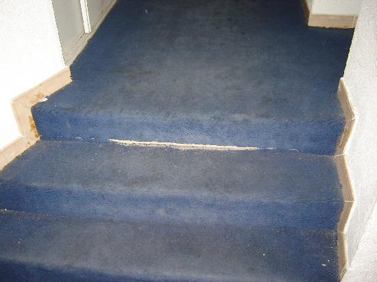 Hotel du Bois des Espiesses: stair carpet