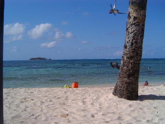 Hotel Calypso: Playas al frente del hotel