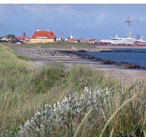 Hotel Skibssmedien Skagen: Skagen, Beach,  just outside town