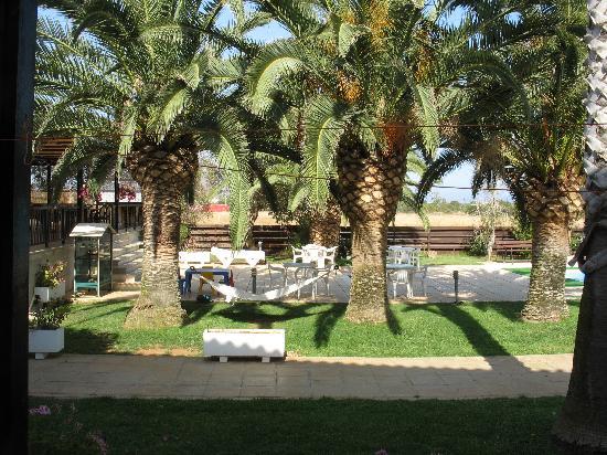 Mon Repos Design Hotel : beautiful gardens with a hammock