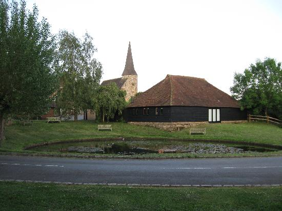The pond at Wisborough Green