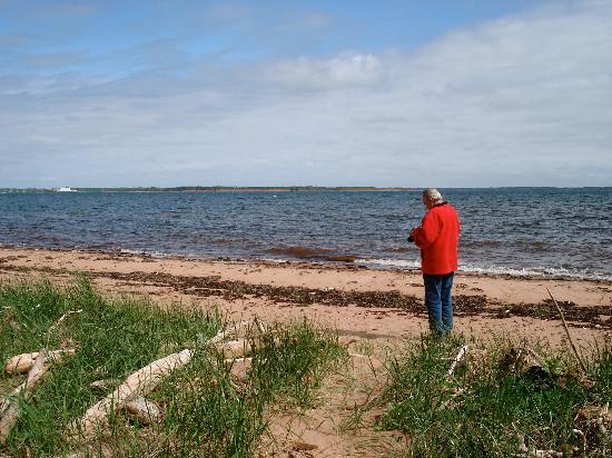 Maplehurst Properties: Enjoying a beach walk