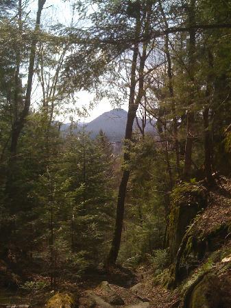 Chalet Auberge Castello: sentier nature, 10min de l'auberge en auto