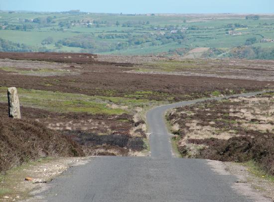Flamborough Rigg Cottage: drive through the Yorkshire Moors