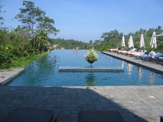 Infinity pool picture of alila ubud payangan tripadvisor for Infinity pool ubud