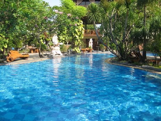 the swimming pool with waterfall picture of green garden