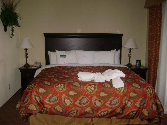 Homewood Suites by Hilton McAllen: our room