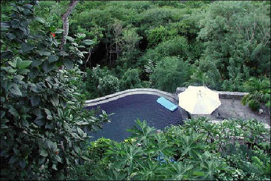 Firefly Mustique Hotel: firefly pool