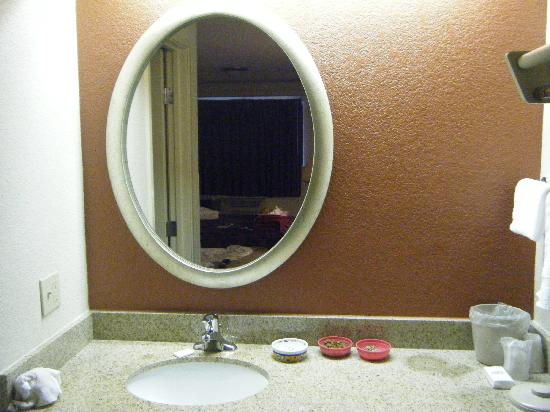 Red Roof Inn Dallas - DFW Airport North: Vanity and Sink