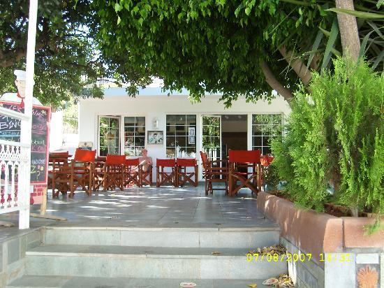 Stalis, Greece: Amazones - outside bar area
