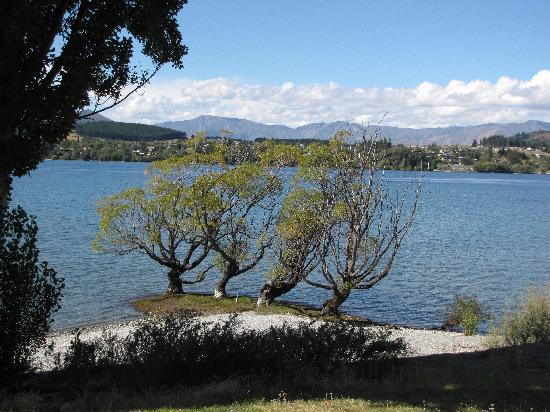 Wanaka Homestead Lodge and Cottages: View of lake from walk