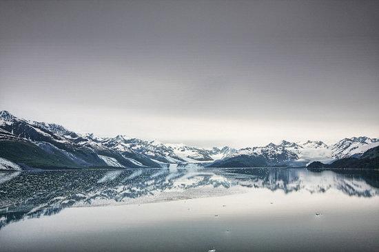 Alaska: College Fjord