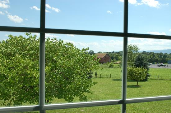 Luray Caverns Motel West: View Out The Back Window