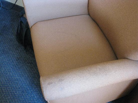Quality Inn & Suites Rainwater Park: Peed Stained Chair