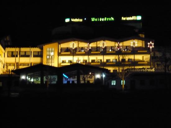 Wellness & Ferienhotel Waldesruh: Nachtansicht