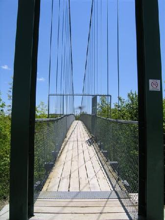Blue Mountains, Canadá: Suspension Bridge