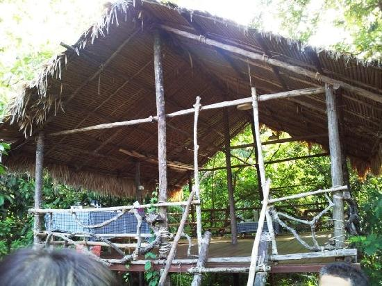 Herbwalk in Langkawi: the self-made wooden house