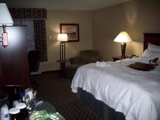 Hampton Inn Austin-Round Rock : room