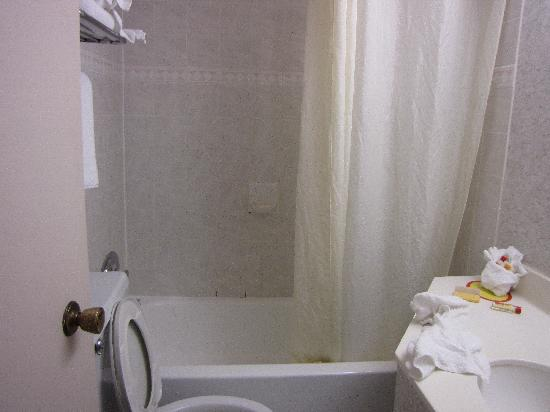 Econo Lodge South: Bathroom