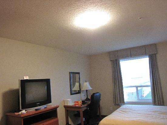 Quality Inn & Suites: TV