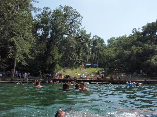Wekiwa Springs State Park: springs on father's day