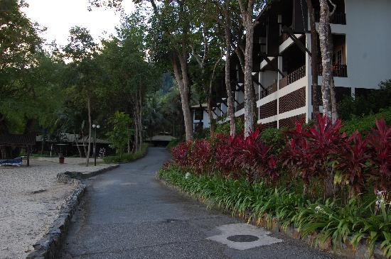 Century Langkawi Beach Resort: The rooms