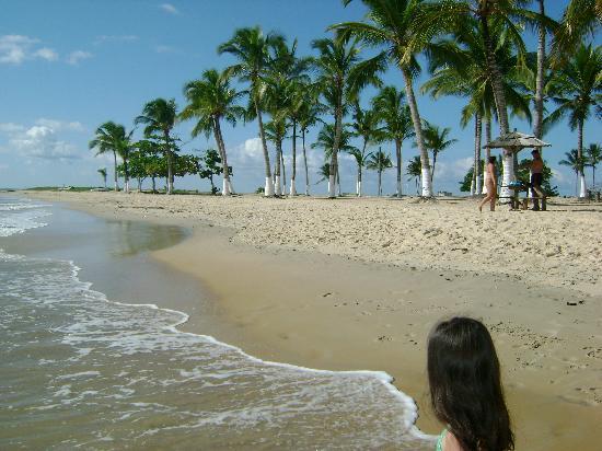 Resort La Torre: bastante sombra ysol