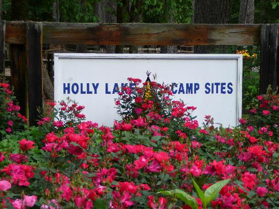 Millsboro, DE: Holly Lake Campsite Sign near Petting Zoo