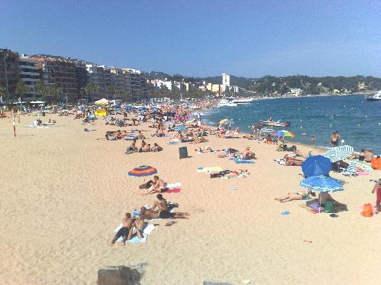 Hotel La Palmera: beautiful beach