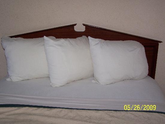 Quality Inn: One of two beds in the room.