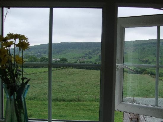Five Acre View : View from the bedroom