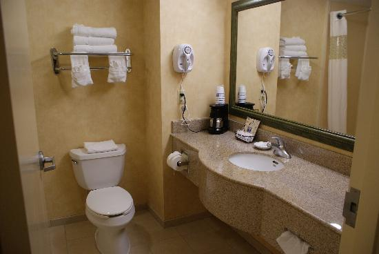 Hampton Inn Stony Creek: bathroom