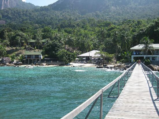 Minang Cove Resort: Looking back at the resort from the Jetty