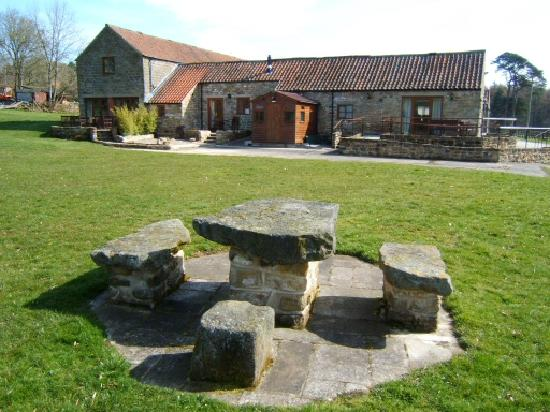 Rawcliffe House Farm Holiday Cottages and Studio Rooms: Our cottage from the gardens