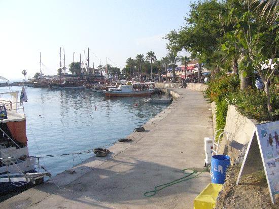 Side Star Beach Hotel: Harbour in Side