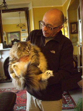 Easedale Lodge: Bob & his Cat