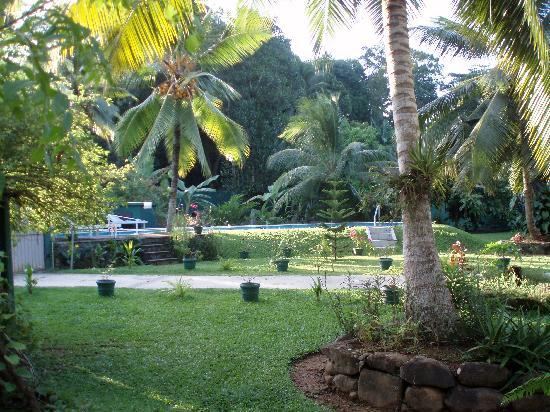 Leijay Resort: Pool view