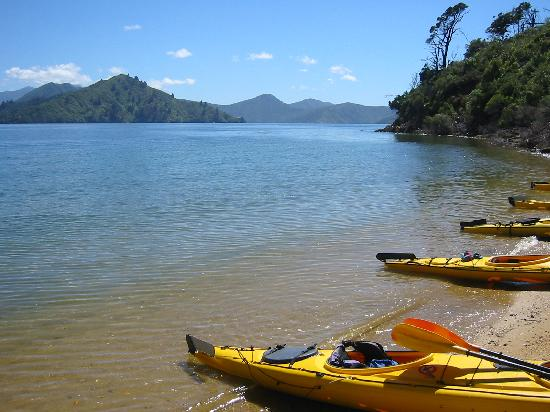 McCormick House Luxury Accommodation: Kayaking from Picton