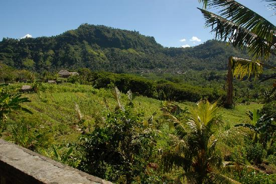 Sidemen, Indonesia: Local town across the valley