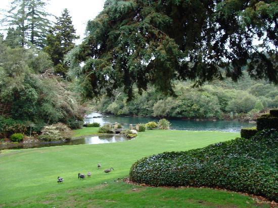 Huka Lodge: the front lawn